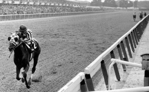 secretariat-the-photo_1212532140